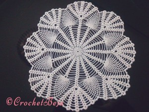 A beautiful collection of Doilies!